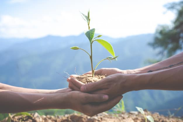 environmental-conservation